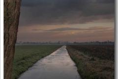donker-weer-langs-boom-stam-kloverse-wg_5916 Hoornaar-Marjolein