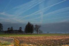 kloverse-weg-links-hek-mais-weg-blauw-lucht Hoornaar-Marjolein