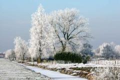 kloverse-weg-veel-rijp-bomen-sneeuw-kloverse-weg-naar-12_5370-Hoornaar-Marjolein