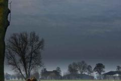 kloversewg-boom-3-knotwilgen-boerderij-schuren-mais-weg Hoornaar-Marjolein
