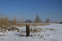 winter-paal-ijs-molen-oudendijk-Marjolein-Hoornaar-2012-1442.